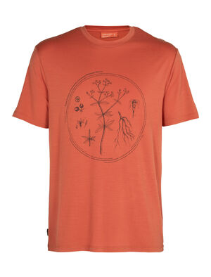 Nature Dye Merino Sisao Short Sleeve Crewe T-Shirt Madder