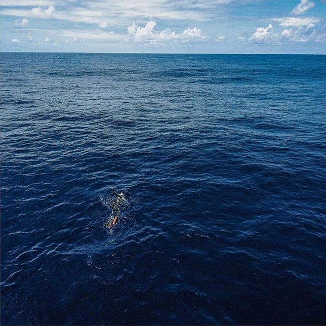 The Vortex Swim x icebreaker